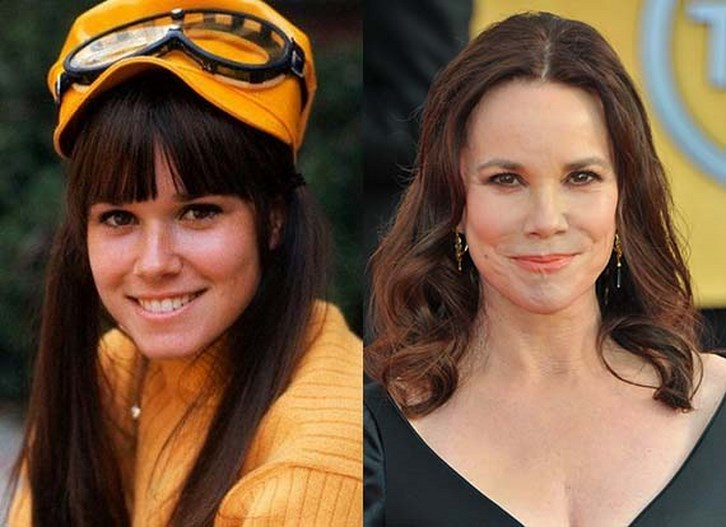 Barbara Hershey Plastic Surgery Before and After Photos