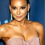 Naya Rivera Plastic Surgery Face